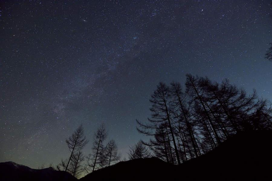 Примеры фото Nikon D810A