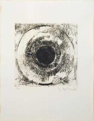 Джаспер Джонс (Jasper Johns) и современный поп-арт 23