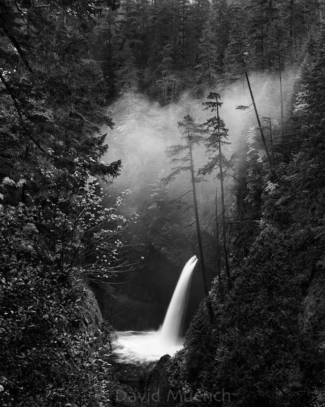 Ландшафтный фотограф Дэвид Мюнх (David Muench) 5