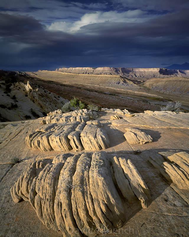 Ландшафтный фотограф Дэвид Мюнх (David Muench) 7