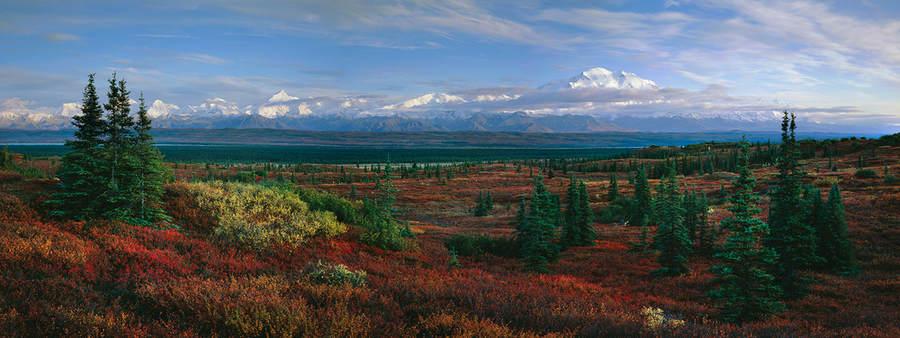 Ландшафтные фотографии Родни Логха (Rodney Lough Jr) 13