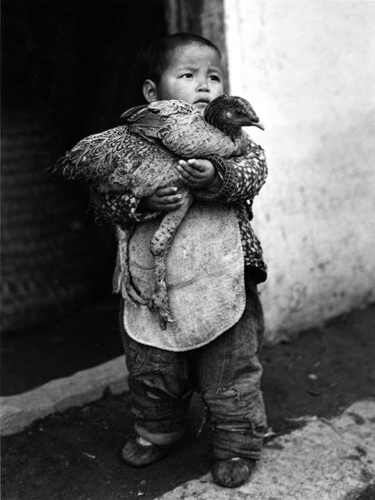 Звезда Американской фотожурналистики - Артур Ротштейн (Arthur Rothstein) 12