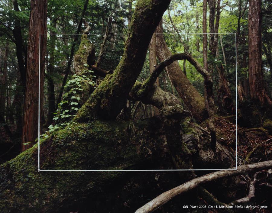 Японский фотограф - Таку Арамаса (Taku Aramasa) 17