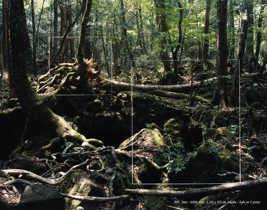 Японский фотограф - Таку Арамаса (Taku Aramasa) 18