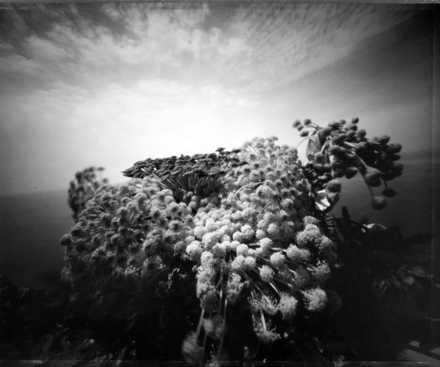 Японский фотограф - Таку Арамаса (Taku Aramasa) 2