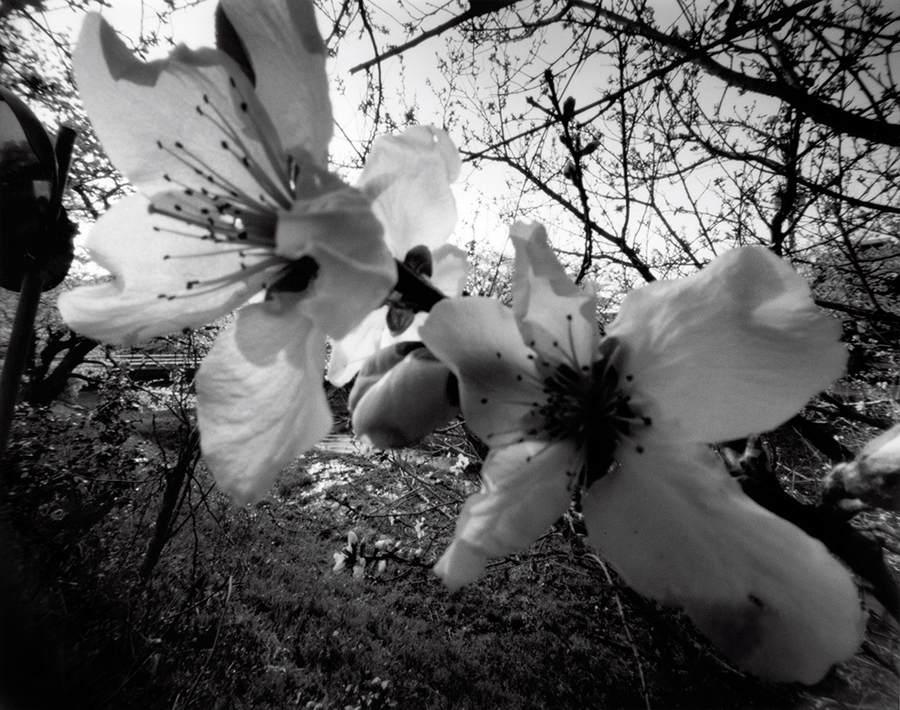 Японский фотограф - Таку Арамаса (Taku Aramasa) 20