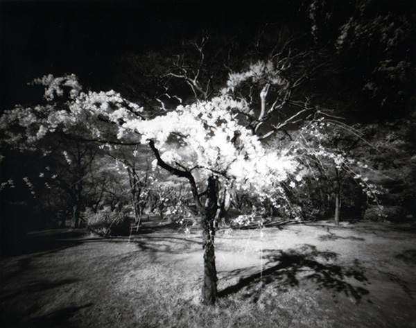 Японский фотограф - Таку Арамаса (Taku Aramasa) 21