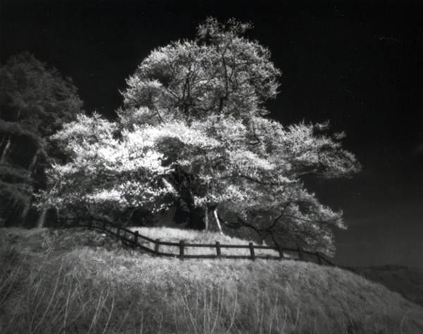 Японский фотограф - Таку Арамаса (Taku Aramasa) 22