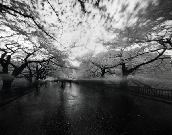 Японский фотограф - Таку Арамаса (Taku Aramasa) 239
