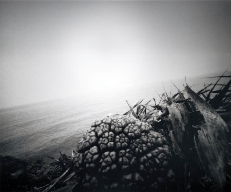 Японский фотограф - Таку Арамаса (Taku Aramasa) 4