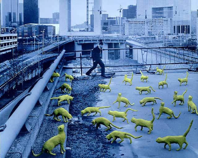 Американский сюрреализм Сэнду Скоглунда (Sandy Skoglund) 14