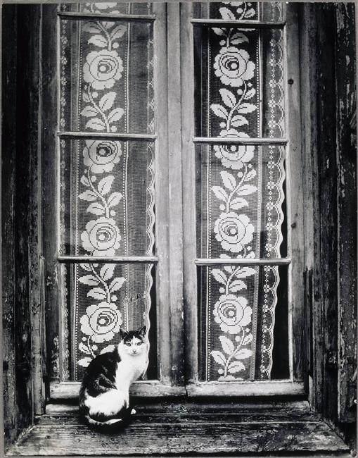 Брассай (Brassaï) и его фотографии 18