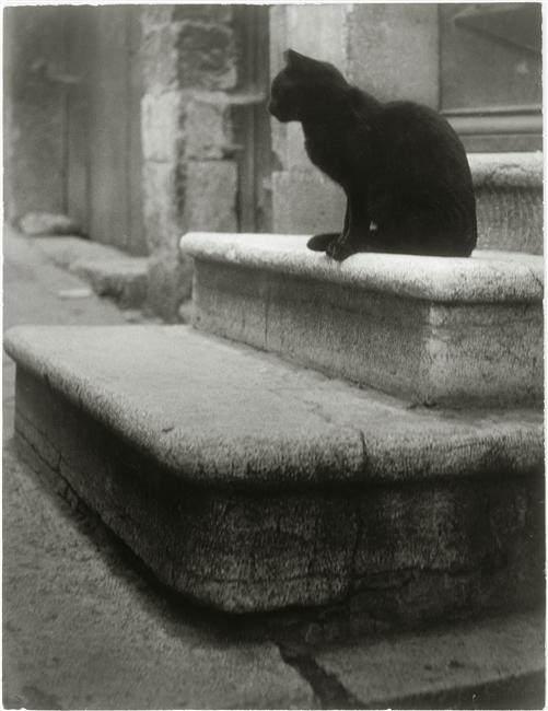 Брассай (Brassaï) и его фотографии 31