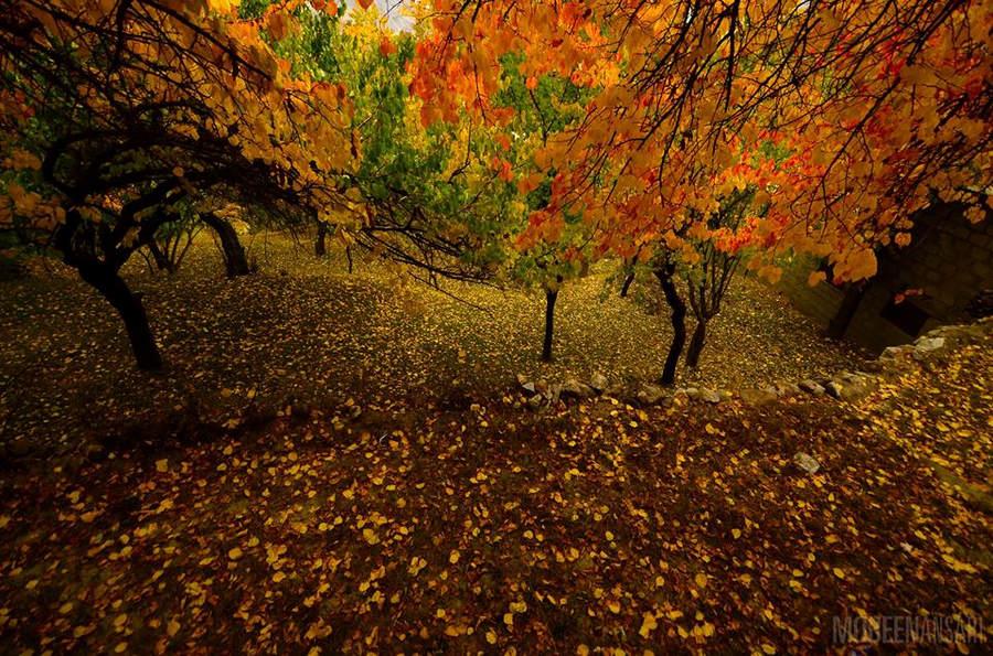 Пакистанский фотограф Мобин Ансари (Mobeen Ansari) 15