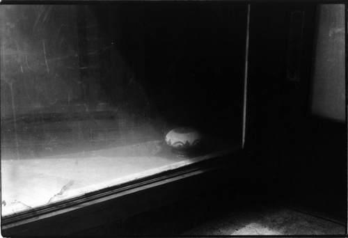 Американский фотограф Дон Донахью (Don Donaghy) 6