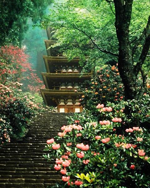 Японский фотограф Таикичи Ири (Taikichi Irie) 7
