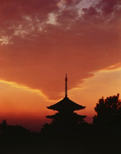 Японский фотограф Таикичи Ири (Taikichi Irie) 9