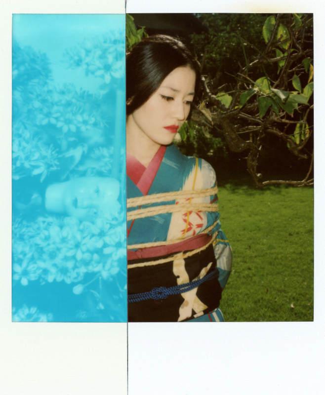 Современный японский фотограф Набуёси Араки (Nobuyoshi Araki) 5