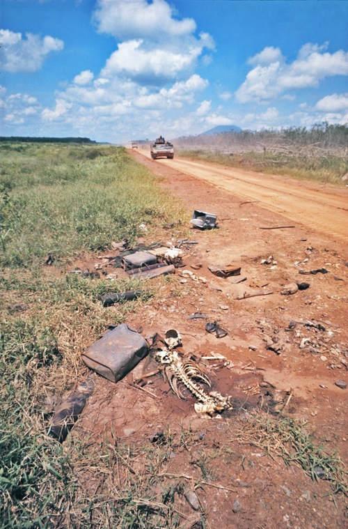 Вьетнамская война Тим Пэйдж (Tim Page) 16