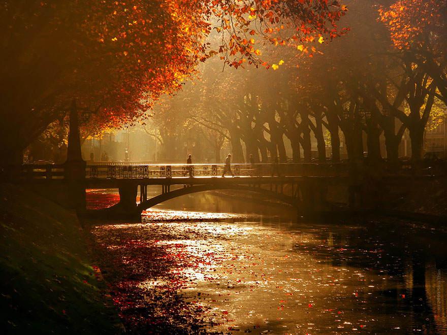 Осенняя фотосессия Обои на рабочий стол