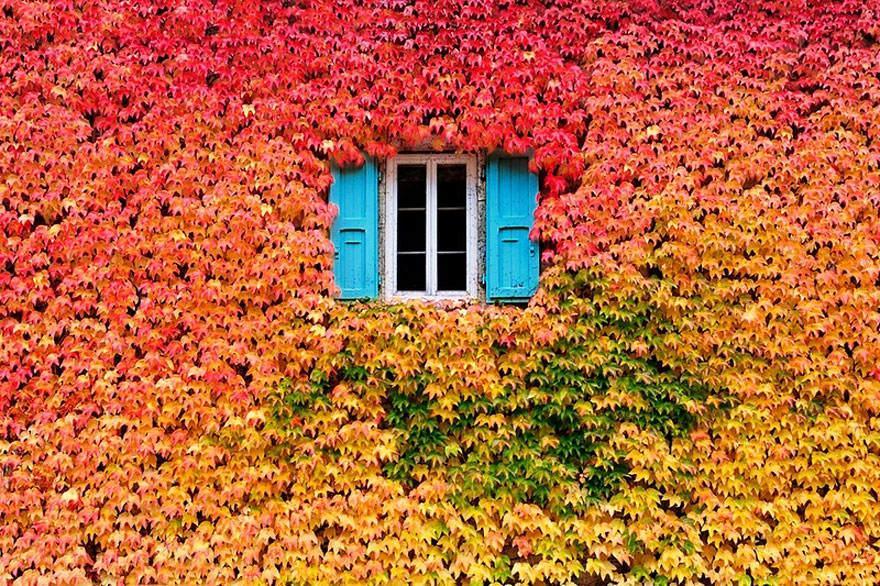 Осенняя фотосессия - идеи способные вас вдохновить